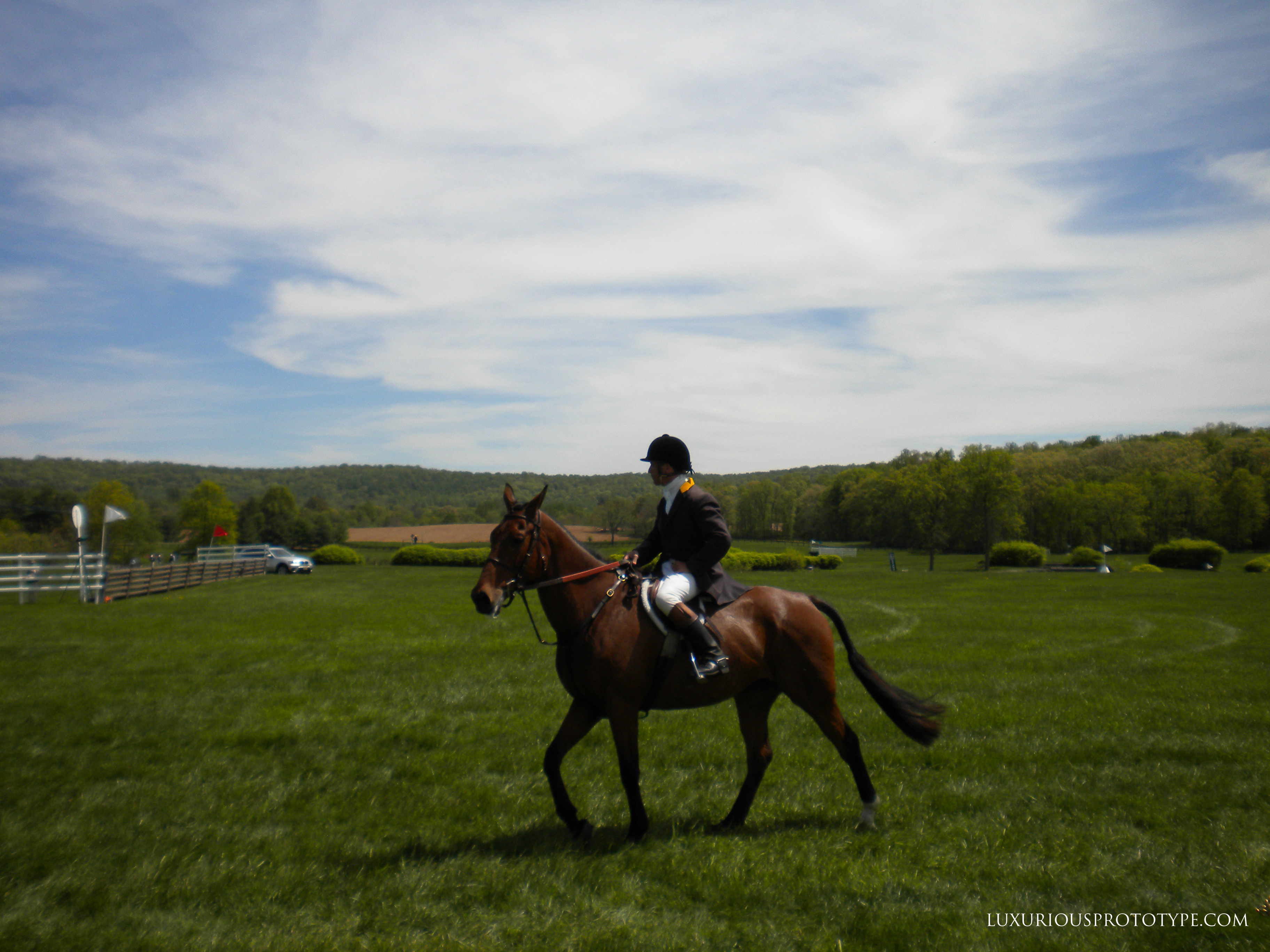 88th Annual Virginia Gold Cup Steeplechase Race
