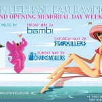 Pink Elephant Returns to the Hamptons