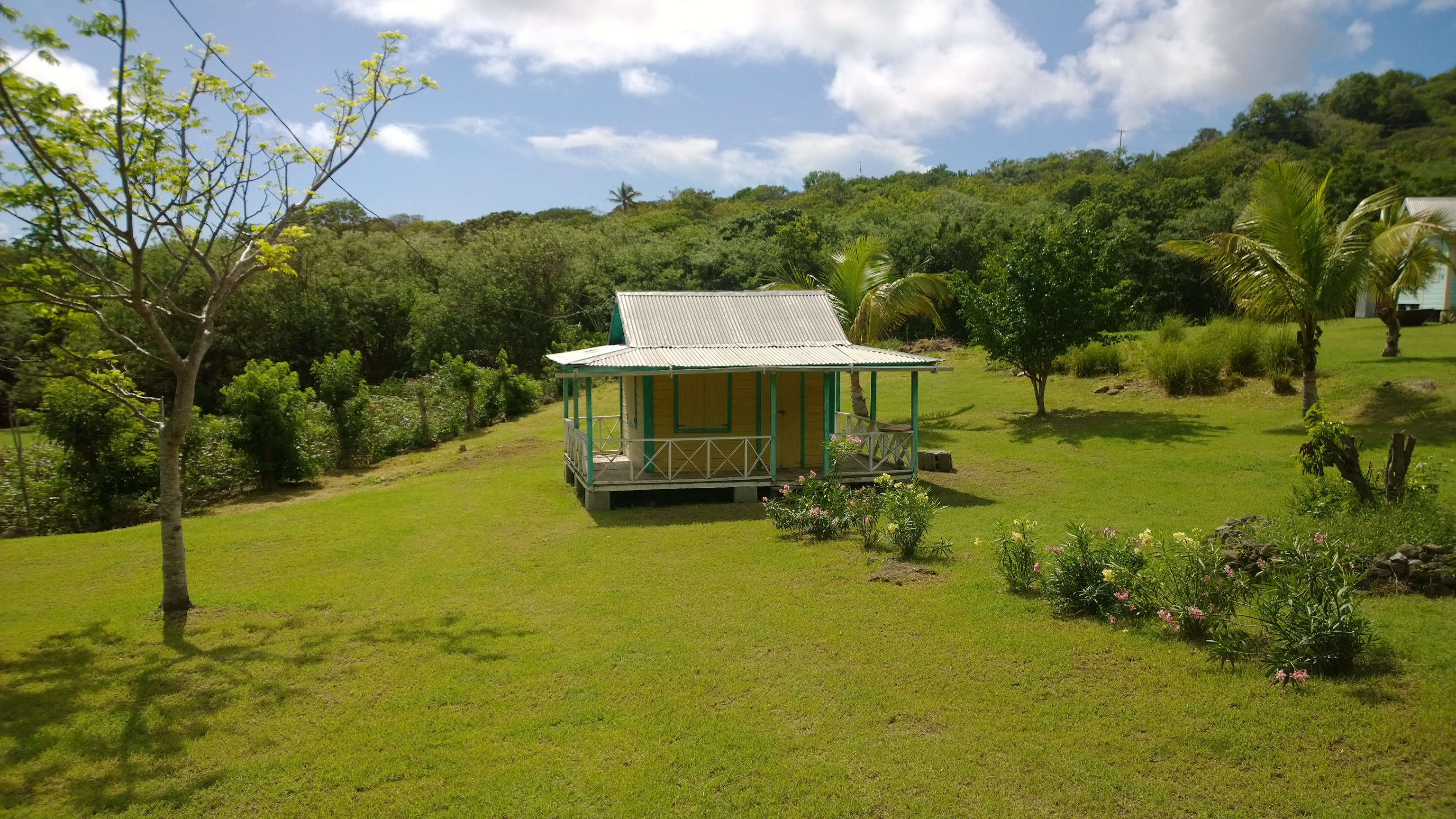 WP 20130307 21 52 57 Pro Why You Should Visit Nevis West Indies | Queen of the Caribees