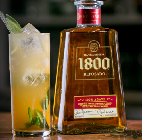 palm rush 1800 tequila